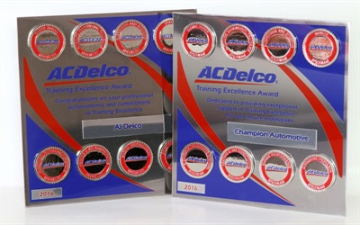 The new ACDelco Technician Training Recognition Program awards technicians with a medallion for each core ASE training path completed. Ten training courses are offered.