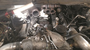 Note the black secondary fuel filter housing at the engine's front left (at far right in this photo).