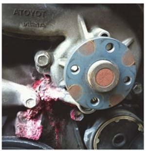 Figure 5: Water pump weep hole leaking. (Courtesy of Napa Autotech)