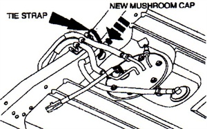 The new mushroom cap must be positioned horizontally to prevent water collection.