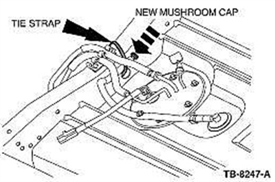 Note the installed position of the new mushroom cap.