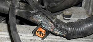 Figure 2: This harness rubbed on a transmission case. Over time, it chafed through.