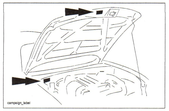The campaign number label may be located on the right-side bulkhead or under the hood.