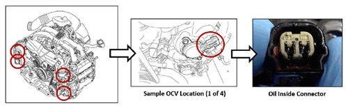 Examples of OCV locations. Look for oil seepage into the harness connector.