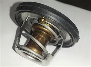 A simple wax pellet thermostat.