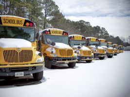 Teresa Morris snapped this shot after a February snowstorm adorned yellow buses in white. Morris...