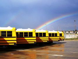 What lies at the end of the rainbow? Not a pot of gold, but a fleet of yellow buses, as Horton...