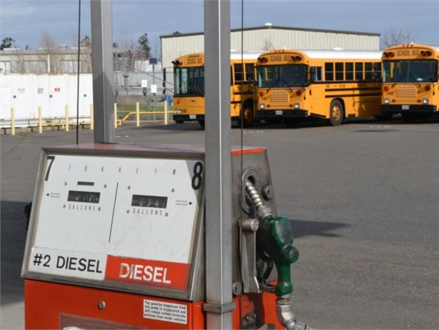 As our sales numbers show, diesel still dominates the school bus market, but there's growing interest in the alternatives.