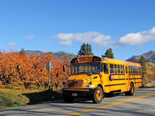 The School Bus Serves as Source of Inspiration for Poetry