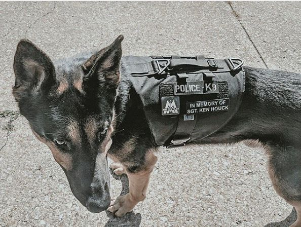 Cleveland RTA K-9 receives bullet-proof vest via boy's fundraiser