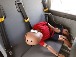 A child-size crash test dummy inside a lap-shoulder belt following the crash demonstration....