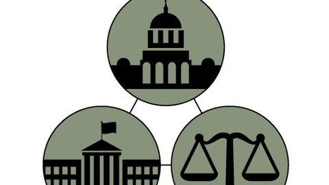 The legislative and judicial branches of government provide options for checks and balances in...