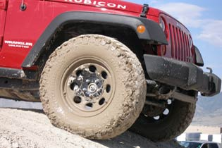 What's the future of LT tire sales?