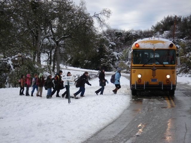 School bus driver's Christmas poem shares safety message