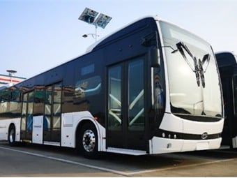 The buses will be manufactured entirely by BYD and operate in the Integrated Public Transportation System.BYD