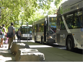 C-TRAN was judged among other systems with a total ridership between 4 million and 20 million trips per year. C-TRAN
