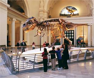 Chicago, home of the Field Museum featuring Sue, the largest complete T. rex ever discovered, is the top visitor destination in the U.S., with 11 million visitors. Photo Credit: © Choose Chicago.