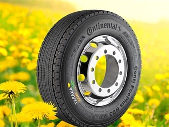 The first sample of a premium winter tire featuring a tread made from pure dandelion rubber was brought onto the road in 2014.
