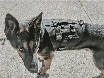 A special K-9 officer of the Greater Cleveland Regional Transit Authority (RTA) Transit Police named Kubo, became the recipient of a custom designed protective vest.MMI Textiles