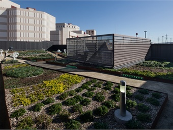 LA Metro's Division 13 Bus Operations & Maintenance facility features a rooftop garden. Photo: Chang Kim-Maintenance Design Group for Metro