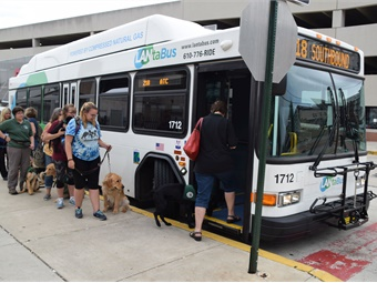 Nearly one dozen puppies were trained in helping their trainers enter and exit buses, stop at fare boxes interact with other passengers, and then, guide them to seats.