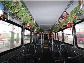 LYNX holiday bus interior. Photo: LYNX