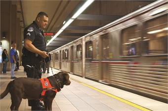 Los Angeles County Sheriff's Department deploys canines throughout the L.A. Metro system daily. Pictured is Metro Transit Security Officer Henry Solis and canine officer explosives detection dog, Nakita, at Union Station Metro Red Line station platform.