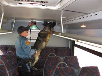 Security strategies include high visibility patrols and sweeps of buses and railcars with explosive detection dogs. Photo courtesy NJ Transit.