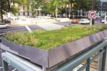 The green roofs are packed with a soil alternative similar to crushed pottery. Since the water can't be held in the structure, the material allows the water to drain through.