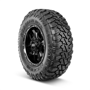 The 'beast' sidewall design of the Nexen Roadian MTX is one of two looks offered on the same tire.