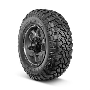 The Nexen Roadian MTX features two distinctive sidewall designs. This is the 'machine' look.