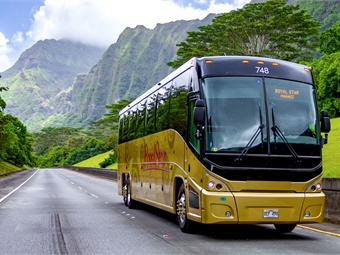 As a subsidiary of Stars of Paradise Tours & Attractions, Royal Star is the leading transportation provider to its parent's popular tour and entertainment venues including the Star of Honolulu.