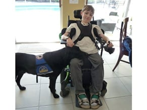 As boys with Duchenne muscular dystrophy get older, their muscle  strength decreases. Many get a service animal to allow for some  independence.