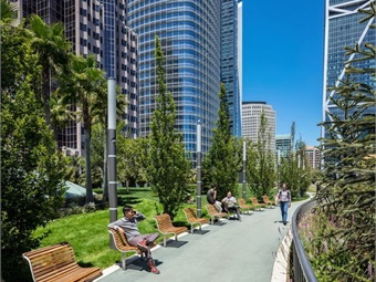 With more than 600 trees and 16,000 plants incorporated into its rooftop park, the Transit Center's ecosystem will capture 12 tons of carbon annually. Photo: © Tim Griffith