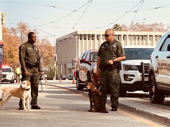 In addition to full-time work with VTA, the dogs will also support the Santa Clara County Sheriff's Office Bomb Squad, which is available for mutual aid to other agencies.