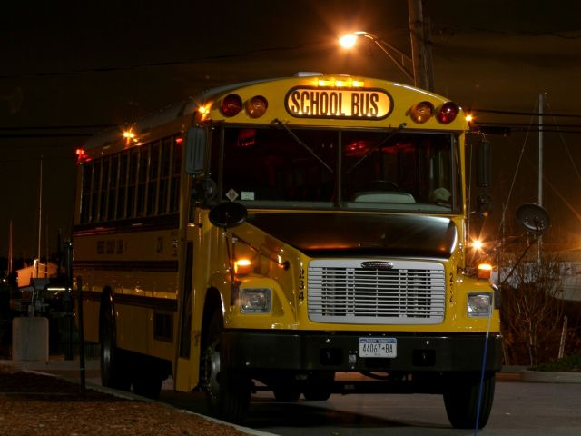 Should the Yellow Bus Be the Star of a Show?