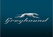 Greyhound reinvents bus travel booking with redesigned website