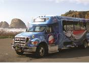 What You Need to Know About Vehicle Graphics