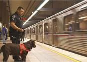 U.S. Rail Ready For Security Challenges