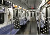 Bed bugs found on N.Y. MTA trains