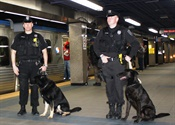 'See Something, Say Something' is Key Anti-Terrorism Tool for Transit