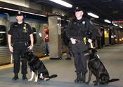 'See Something, Say Something' is Key Anti-Terrorism Tool for Transit