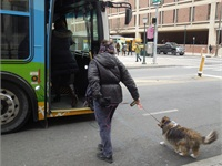 Therapy Dogs are 'Well-Prepared' Passengers on Transit