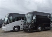 Mid-sized coach sales continue upward trend, overall coach sales down slightly in 2019