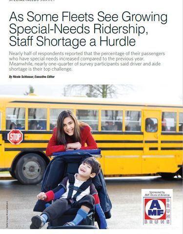 Special-Needs Survey 2019