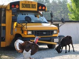 This shot from Tammy Coates from a Head Start in Lynchburg, Va., was also selected as an...