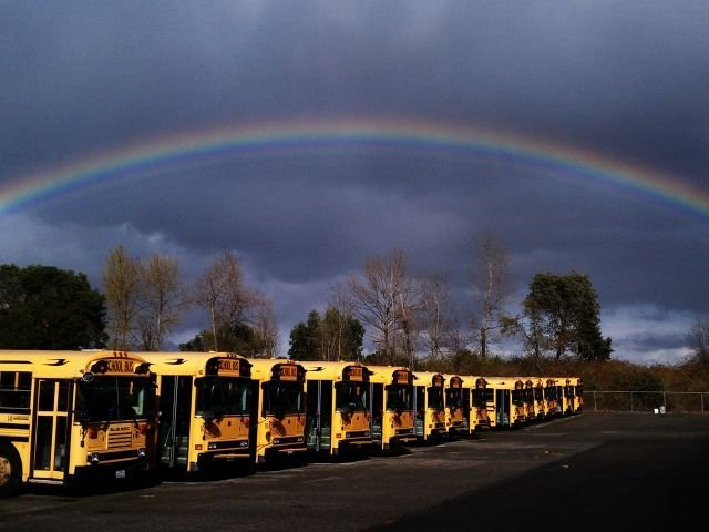 Cindy Hanson of Highline Public Schools in Burien, Wash., earned honorable mention for this shot.