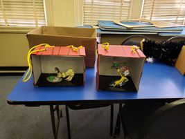 Shadow boxes depicting scenes from the Dr. Suess book Green Eggs and Ham were also displayed.