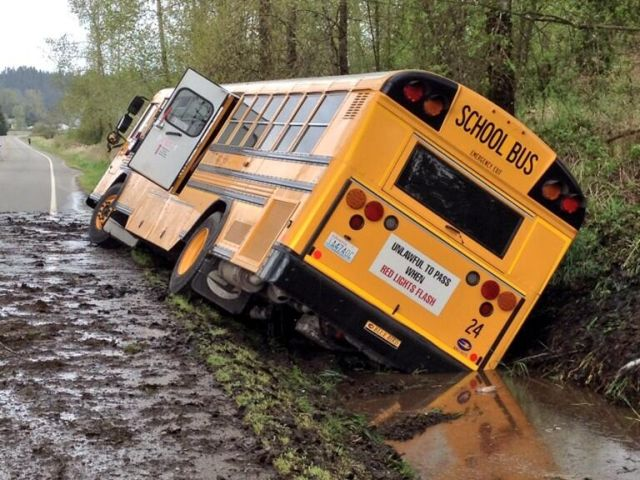 School bus driver fired after crashing into ditch