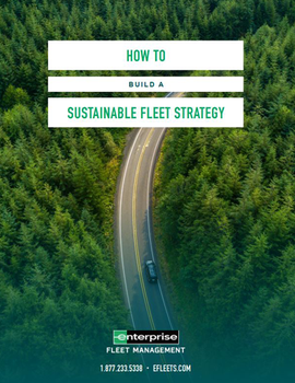 How To Build a Sustainable Fleet Strategy